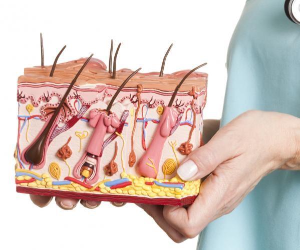 фото дерматовенерология